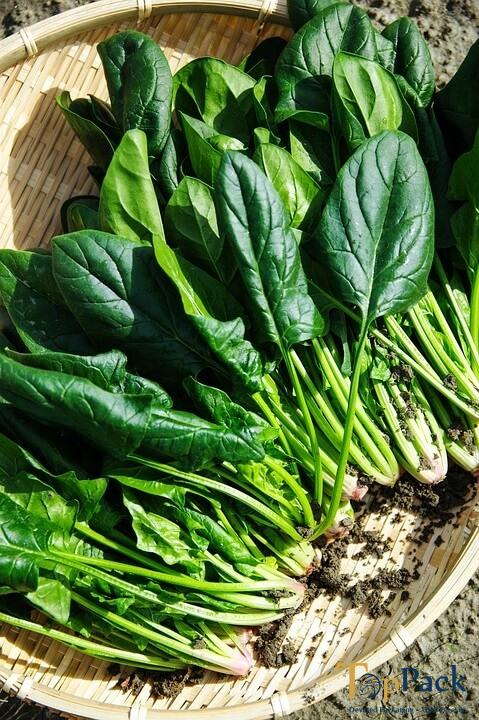 Top 7 lý do nên ăn cải bó xôi thường xuyên